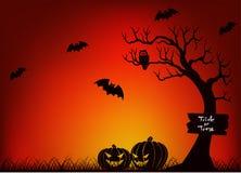 Страшный хеллоуин с летучей мышью, деревом и тыквой Стоковое Фото