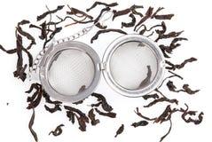 Стрейнер чая на цепи, при черный чай, изолированный на белой предпосылке Стоковое Фото