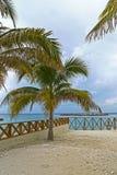 стременое cay Багам большое Стоковое Изображение