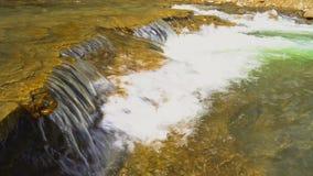 Стремительное река горы в горах Кавказа видеоматериал