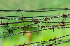 Стренги колючей проволоки Стоковая Фотография RF