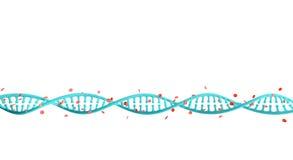 Стренги дна с гемоглобином Стоковое Изображение RF
