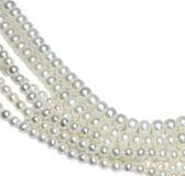 Стренги перлы Стоковое Фото
