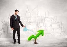 Стрелка зеленого растения бизнесмена моча Стоковая Фотография RF