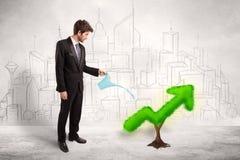 Стрелка зеленого растения бизнесмена моча Стоковые Изображения RF