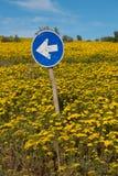 Стрелка направления подписывает внутри луг цветков на западном побережье юга Стоковые Изображения