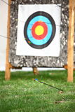 Стрельба из лука Стоковое Изображение