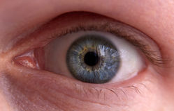стрельба макроса голубого глаза людская Стоковое Фото
