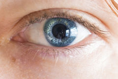 стрельба макроса глаза eos камеры 20d людская Стоковое Изображение