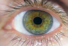 стрельба макроса глаза eos камеры 20d людская Стоковые Фото