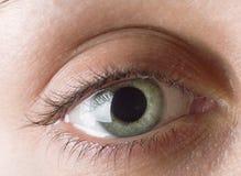 стрельба макроса глаза eos камеры 20d людская Стоковые Изображения RF