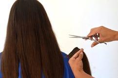 Стрижка на действительно длинных волосах стоковая фотография rf