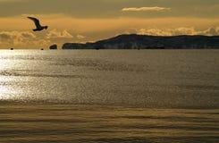 стробирует океан Стоковая Фотография