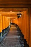 Стробы Torii в святыне Fushimi Inari, Киото, Японии Стоковые Изображения RF