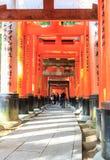 Стробы Torii в святыне Fushimi Inari, Киото Стоковое Изображение RF