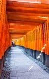 Стробы Torii в святыне Fushimi Inari, Киото Стоковое Фото