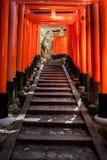 Стробы Torii на святыне Fushimi Inari в Киото, Японии Стоковая Фотография RF