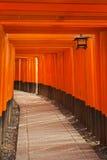 Стробы Torii святыни Fushimi Inari в Киото, Японии Стоковая Фотография RF