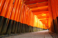 Стробы Torii, святыня Fushimi Inari, Киото, Япония Стоковые Изображения RF