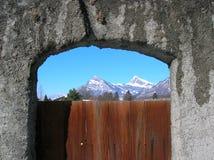Строб виноградника с взглядом гор Стоковые Фотографии RF