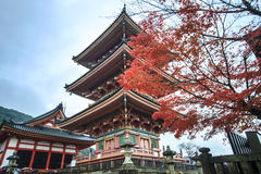 Строб виска Kiyomizu-dera в Киото, Японии Стоковые Фото
