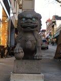 Строб дракона ` s Чайна-тауна, лев попечителя мужской, 6 Стоковое фото RF