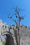 Строб замка Стоковые Фото