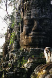 строб Камбоджи Стоковые Изображения RF