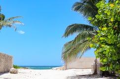 Строб к виду на море от дороги к Мексиканскому заливу с стенами как на сторонах и на виноградинах пальмы, так и моря на одно стор Стоковое Фото