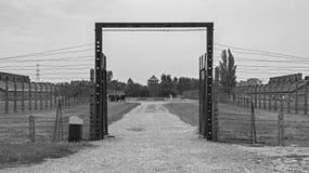 Строб на b&w Birkenau стоковое фото