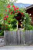 Строб розового свода деревянный Стоковое Фото