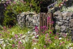 строб сада Стоковые Изображения