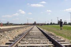 Строб смерти в Birkenau стоковое изображение rf