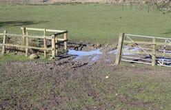 строб фермы открытый Стоковая Фотография RF