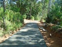 Строительство дорог в деревне в Шри-Ланке Стоковая Фотография