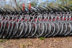 Строка арендных велосипедов для зеленого транспорта стоковое изображение