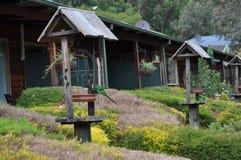 Строка ванн птицы и подавая станций в открытом саде Стоковые Изображения
