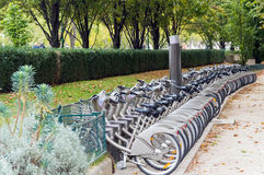 Строка велосипедов для ренты на автостоянке велосипеда Стоковое Изображение