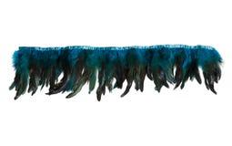Строка голубых декоративных пер Стоковые Изображения RF