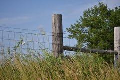 Строка загородки страны стоковая фотография rf