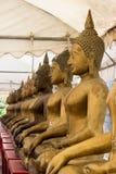 Строка золотых статуй Будды на виске Champa, Taling Chan Стоковые Изображения