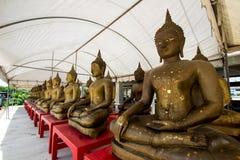 Строка золотых статуй Будды на виске Champa, Taling Chan Стоковое фото RF