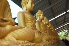 Строка золотых усаженных buddhas стоковая фотография rf