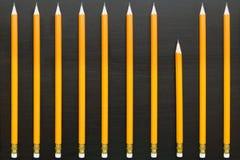 Строка идентичных длинных карандашей с один различный коротким Стоковые Изображения RF