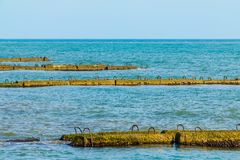 Строка молей в море Стоковые Изображения