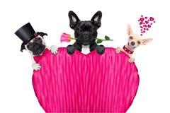 Строка дня валентинок собаки Стоковое Изображение