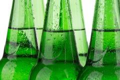 Строка пивных бутылок стоковые фотографии rf
