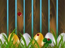Строка покрашенных пасхальных яя в зеленой траве рядом с деревянной загородкой сада страны с красными ladybugs Задняя часть векто иллюстрация вектора