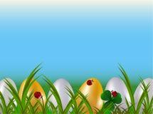Строка покрашенных пасхальных яя в зеленой траве сада с красными ladybugs и голубым лукавым Предпосылка вектора шаржа праздника в Стоковые Изображения