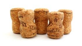 Строка пробочек шампанского стоковое изображение